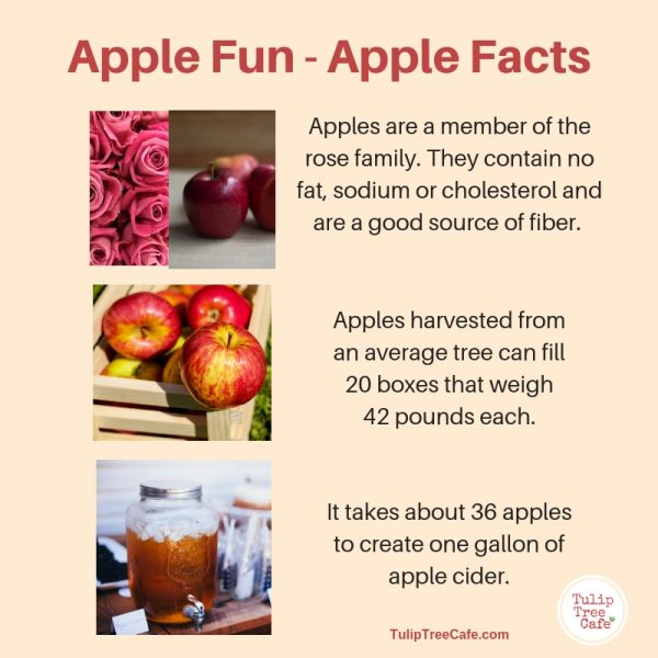 Apple Fun – Apple Facts!